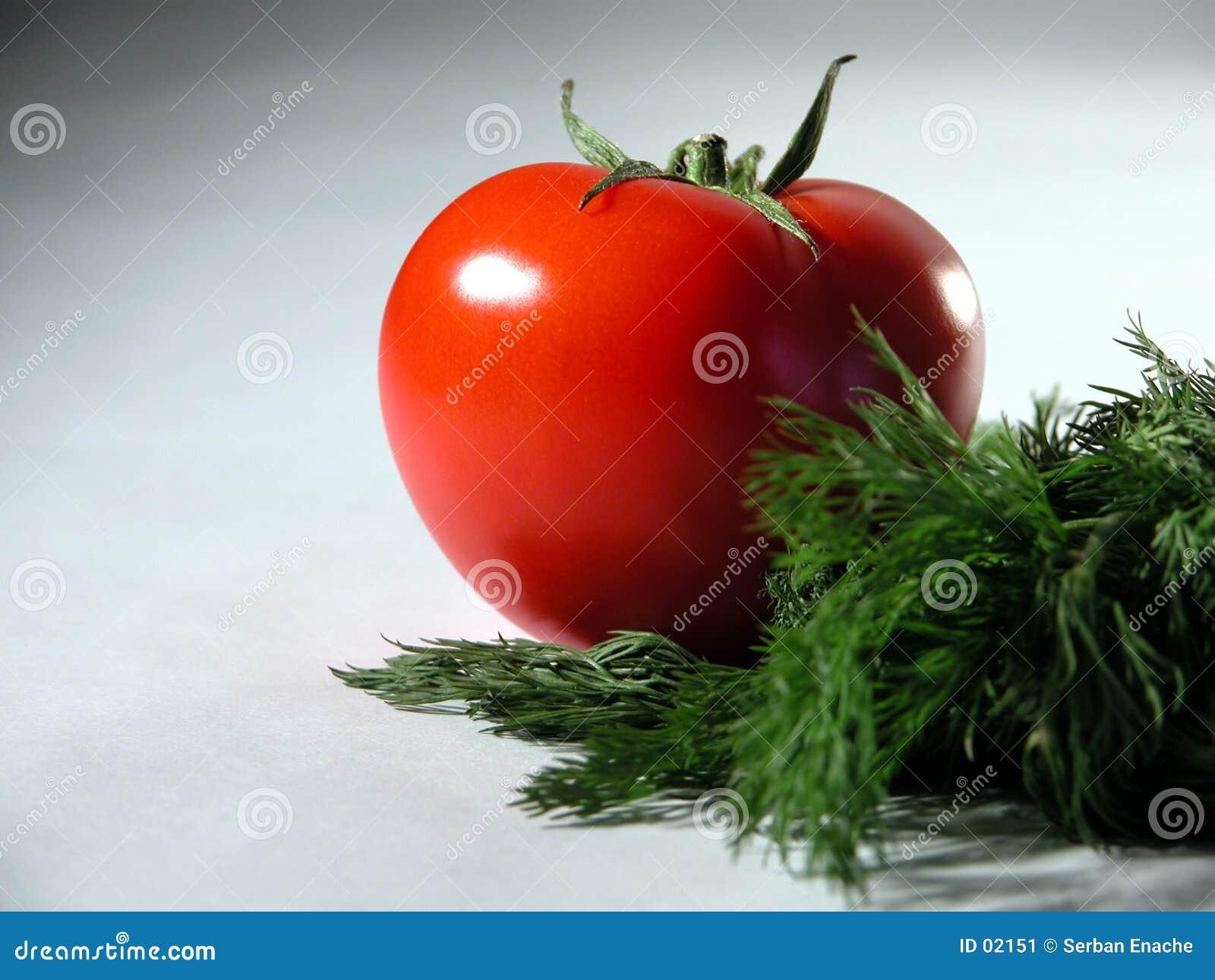 Tomate e aneto frescos