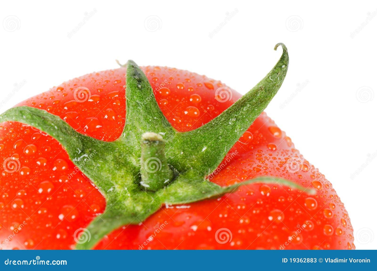 Tomate fresco vermelho