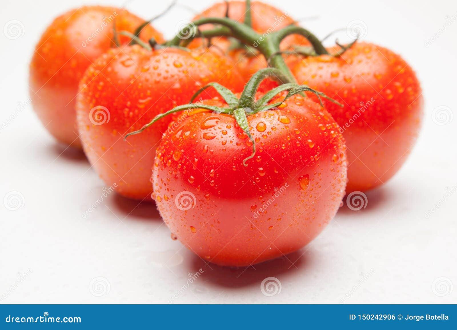 Tomate rojo, con descensos del agua que denota frescura y salud