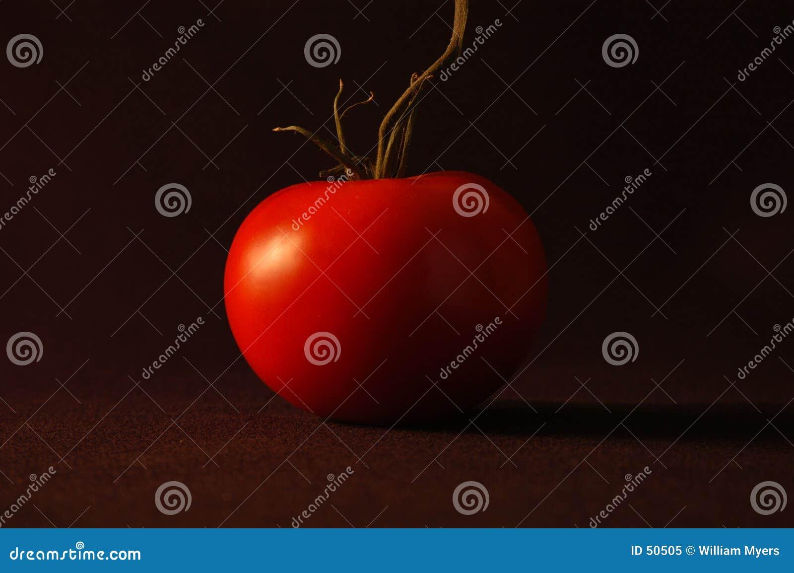 Download Tomate rouge image stock. Image du mûr, été, vigne, tomate - 50505