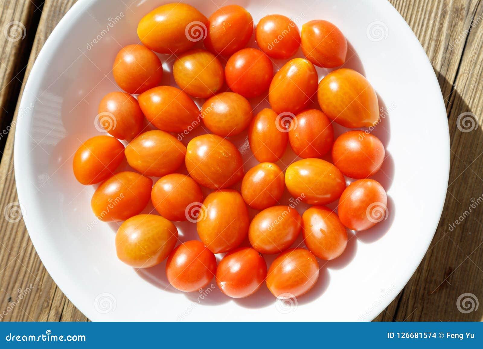 Tomate vom Garten Stockbilder