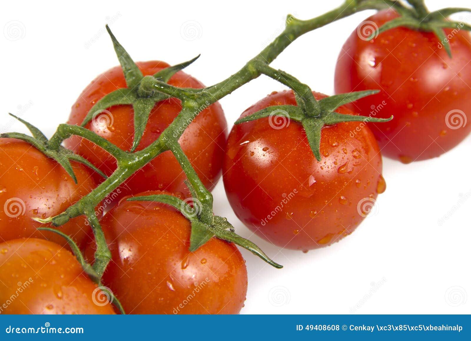 Download Tomaten stockfoto. Bild von landwirtschaft, rebe, reif - 49408608