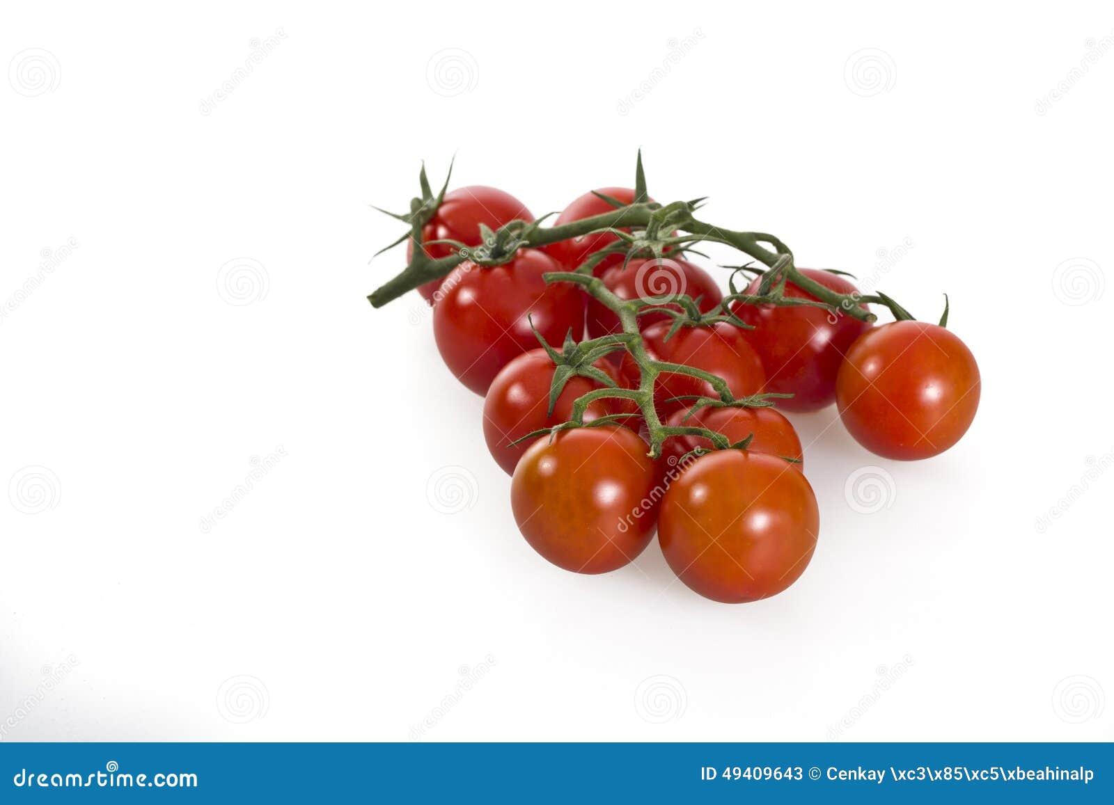 Download Tomaten stockbild. Bild von organisch, getrennt, bestandteil - 49409643