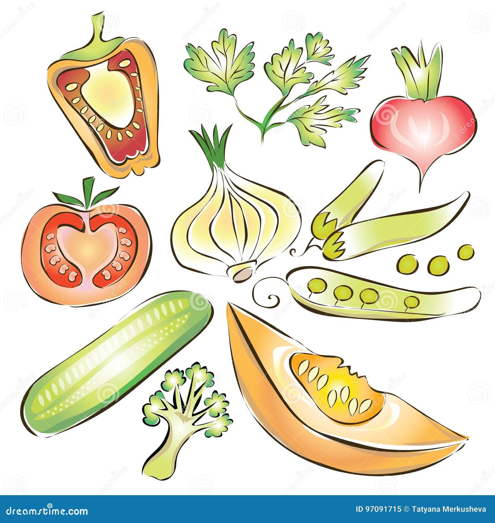 Tomaten, Champignon, Gurken, Kohl, Rettiche, Kopfsalat und grüne Zwiebeln Pfeffer, Gurke, Zwiebel