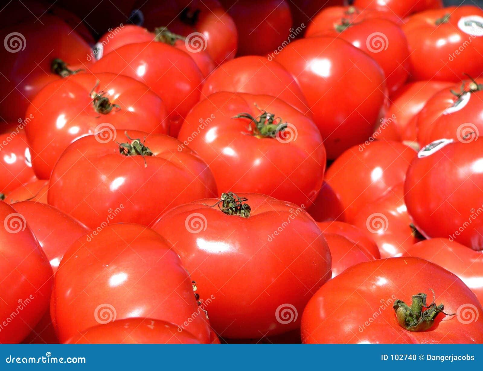 Tomaten am Markt