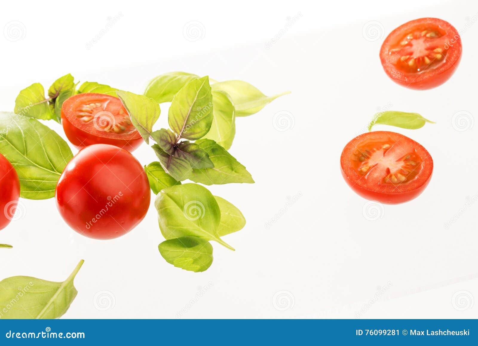 Tomater med basilika på vit bakgrund