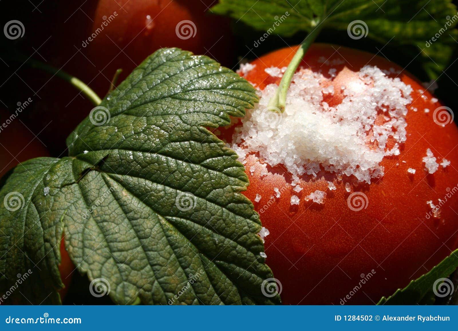 Tomates con macro de las hojas y de la sal de la pasa
