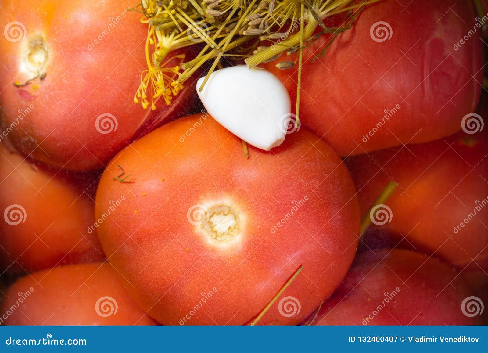 Tomates conservados y un clavo del ajo en el fondo