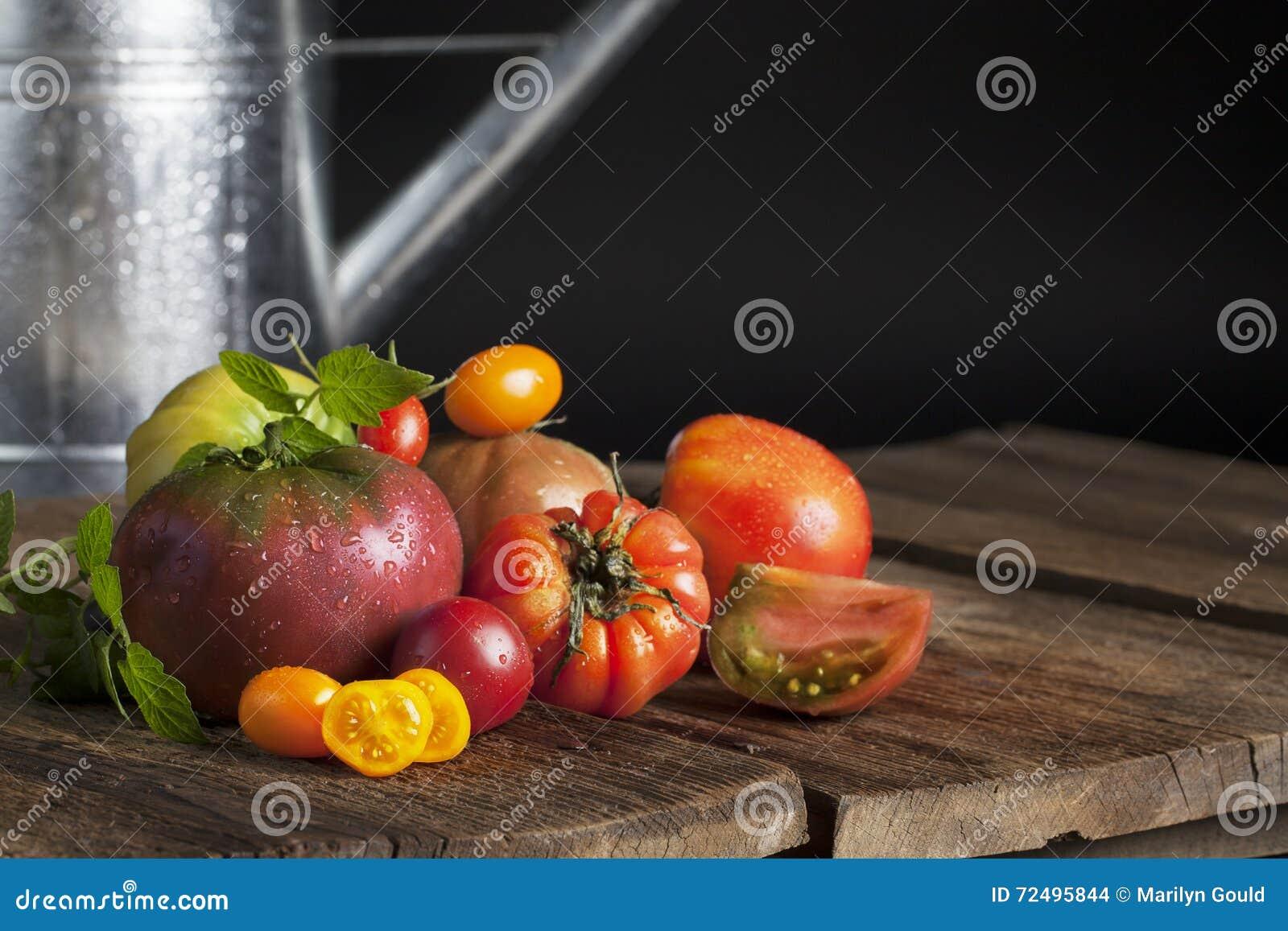 Tomates d héritage