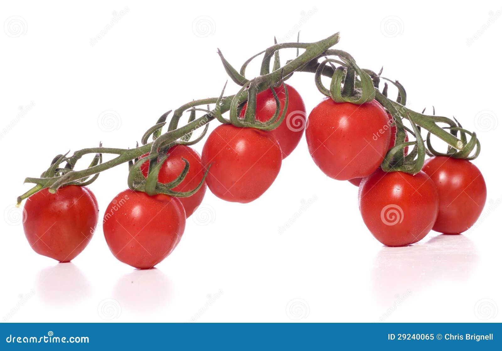 Download Tomates Da Videira Cortados Imagem de Stock - Imagem de branco, saudável: 29240065