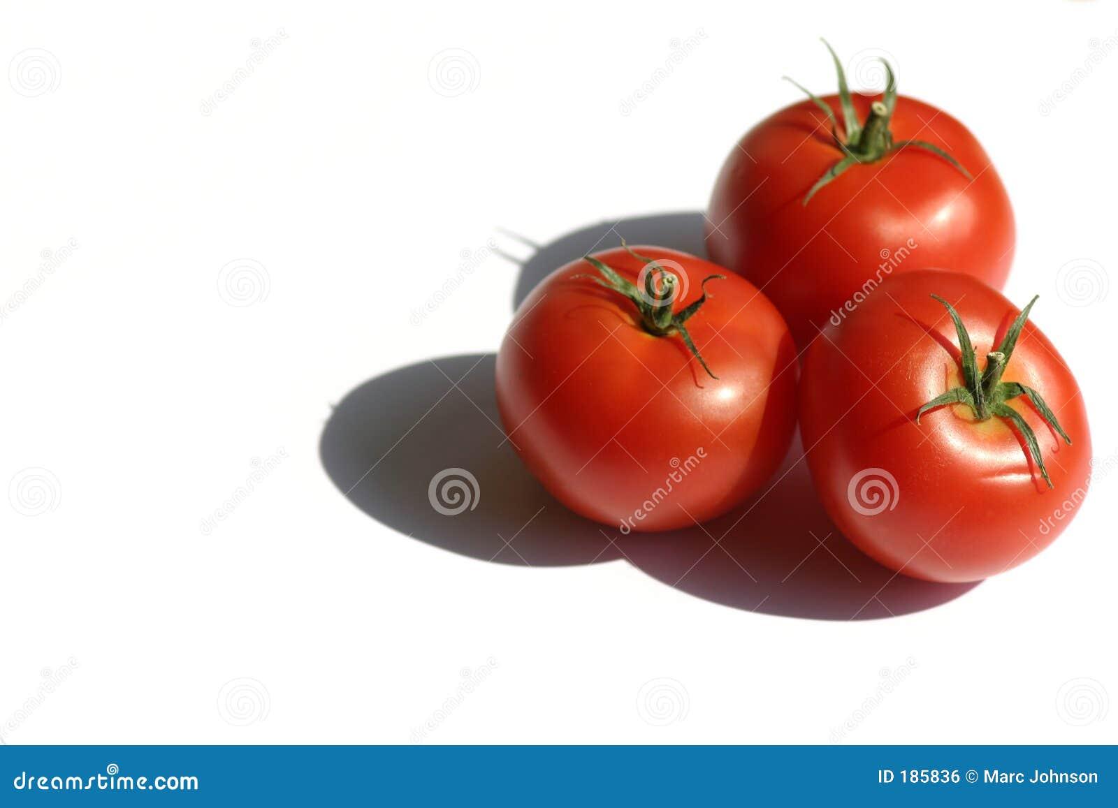 Tomates III