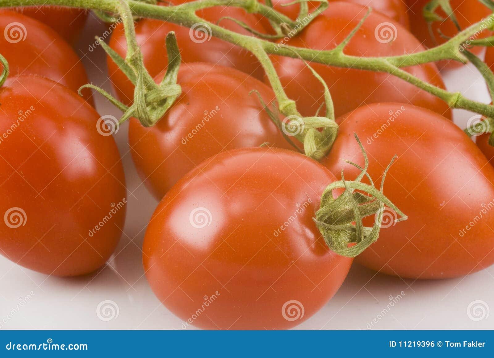 tomates italiennes sur la vigne image libre de droits image 11219396. Black Bedroom Furniture Sets. Home Design Ideas
