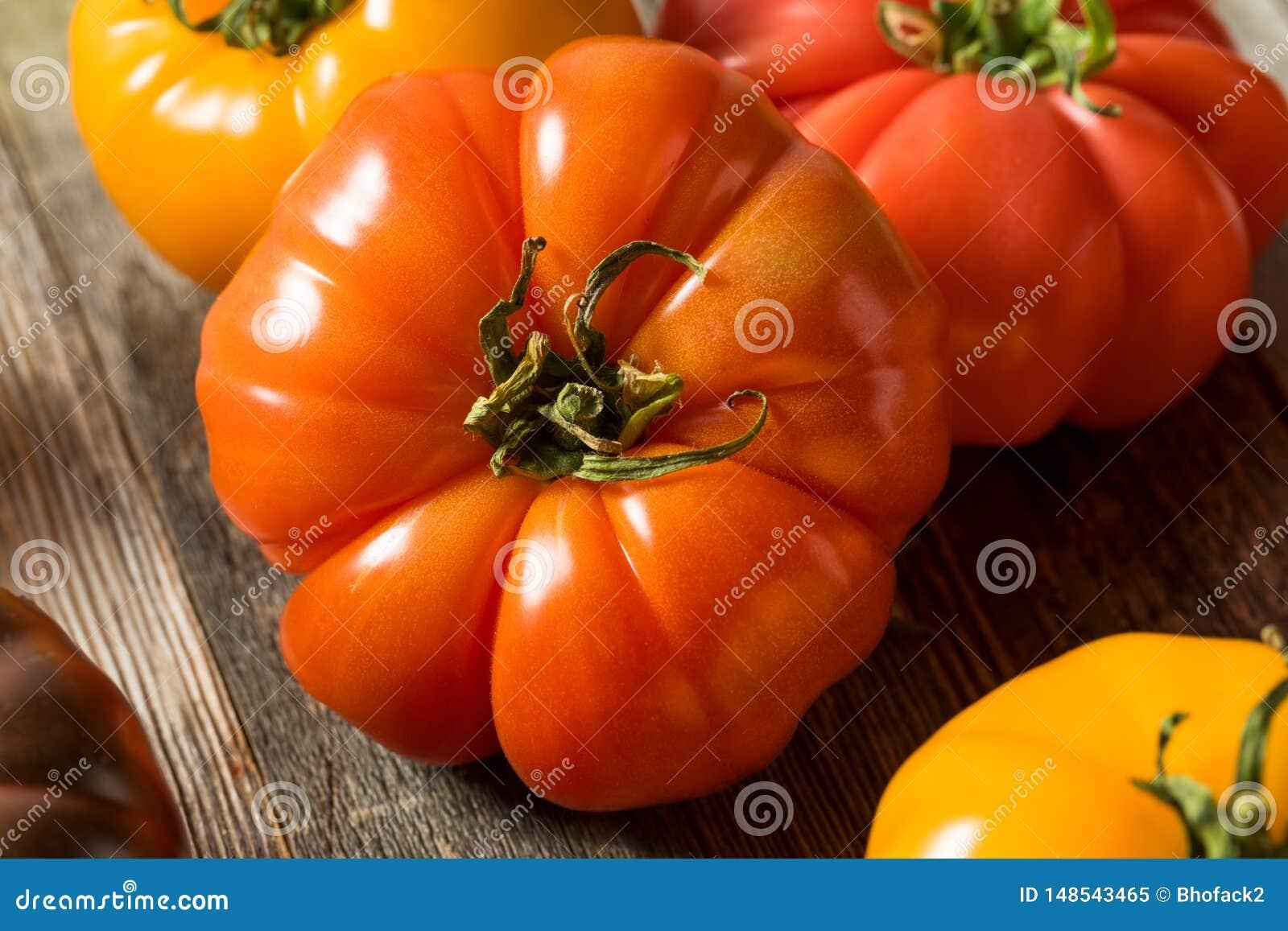 Tomates organiques saines d héritage