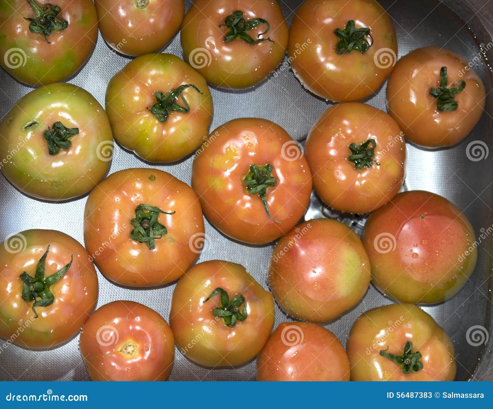 Tomates sur le bain d eau