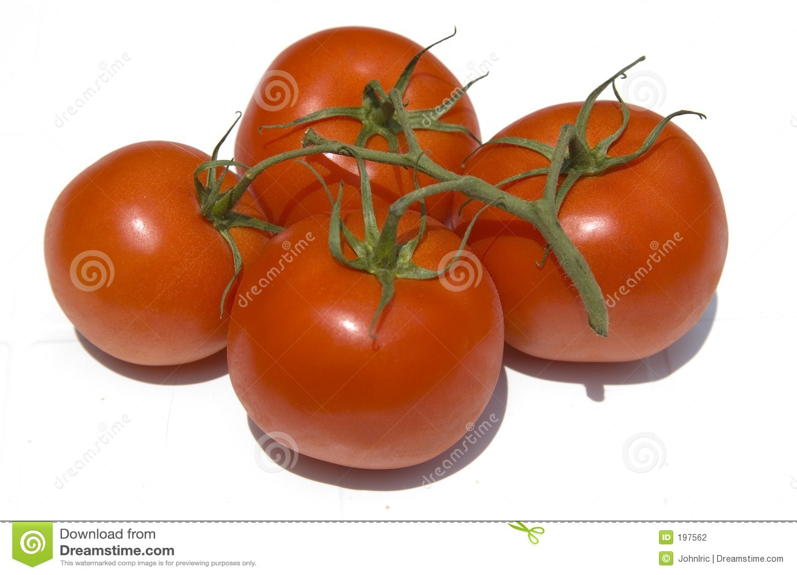 Tomates sur une vigne