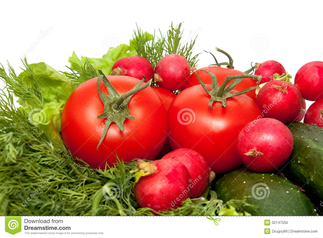 Tomato cucumber and garden radish royalty free stock Tomato garden design