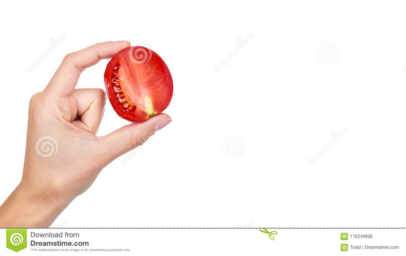 tomato in hand isolated on white background copy space template