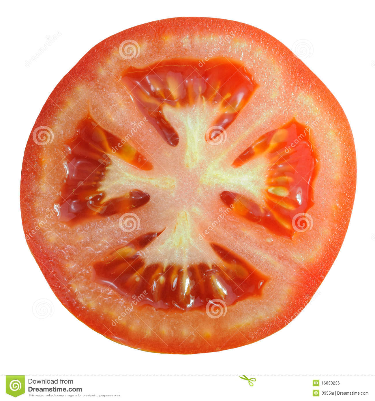 tomato slice stock photo image of ripe freshness white 16830236