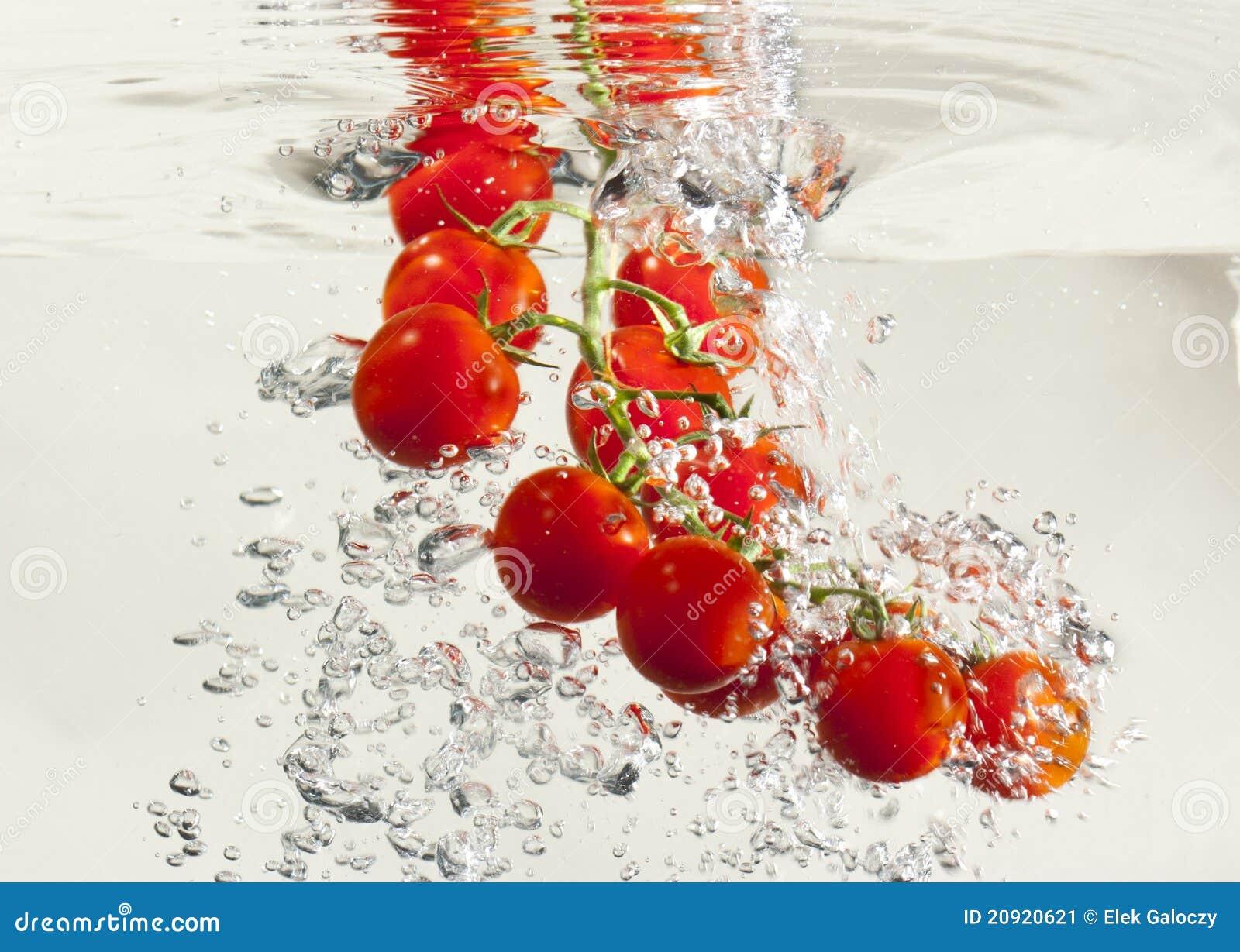 tomato splash stock image image 20920621