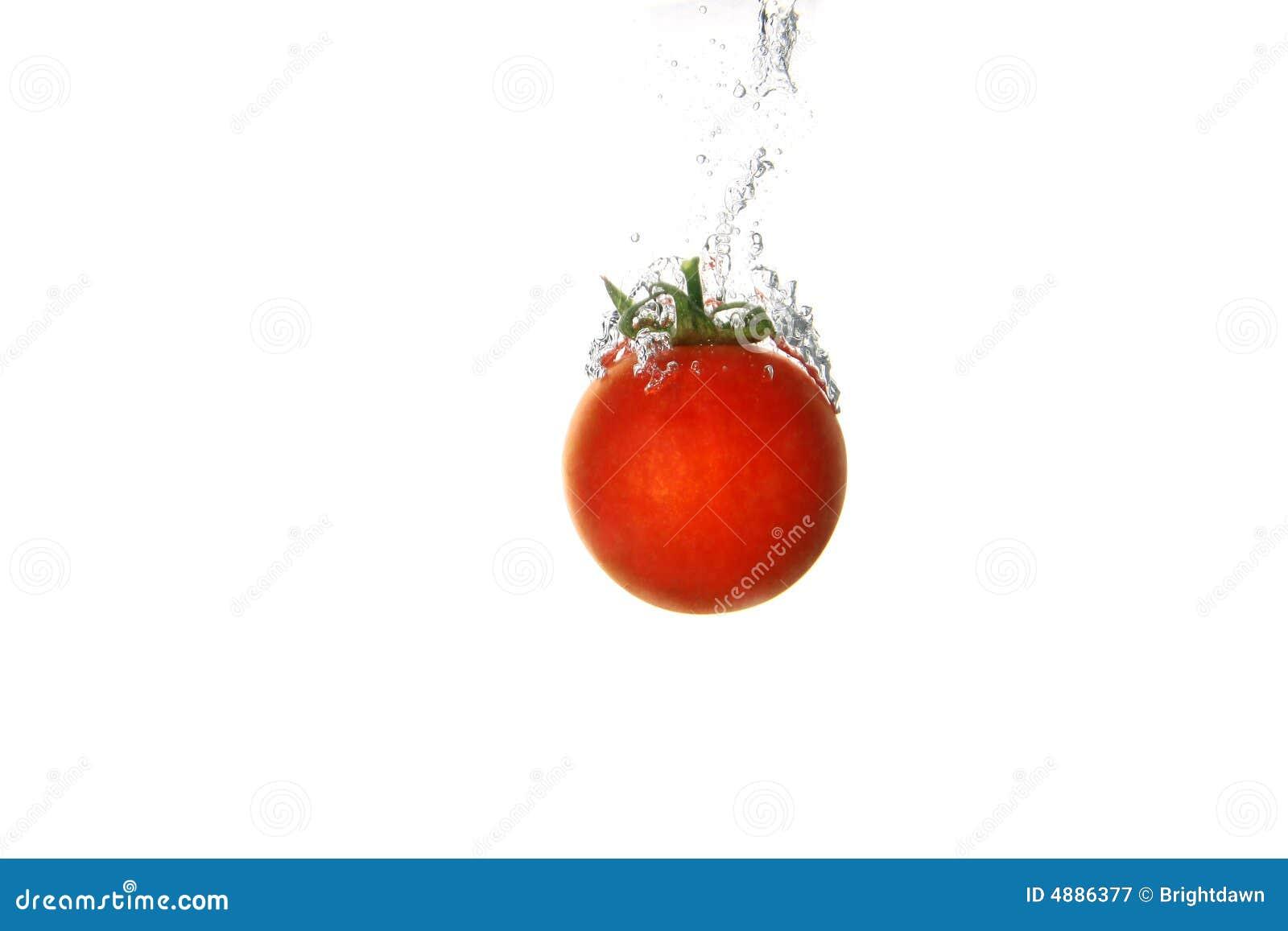 tomato splash royalty free stock photography image 4886377