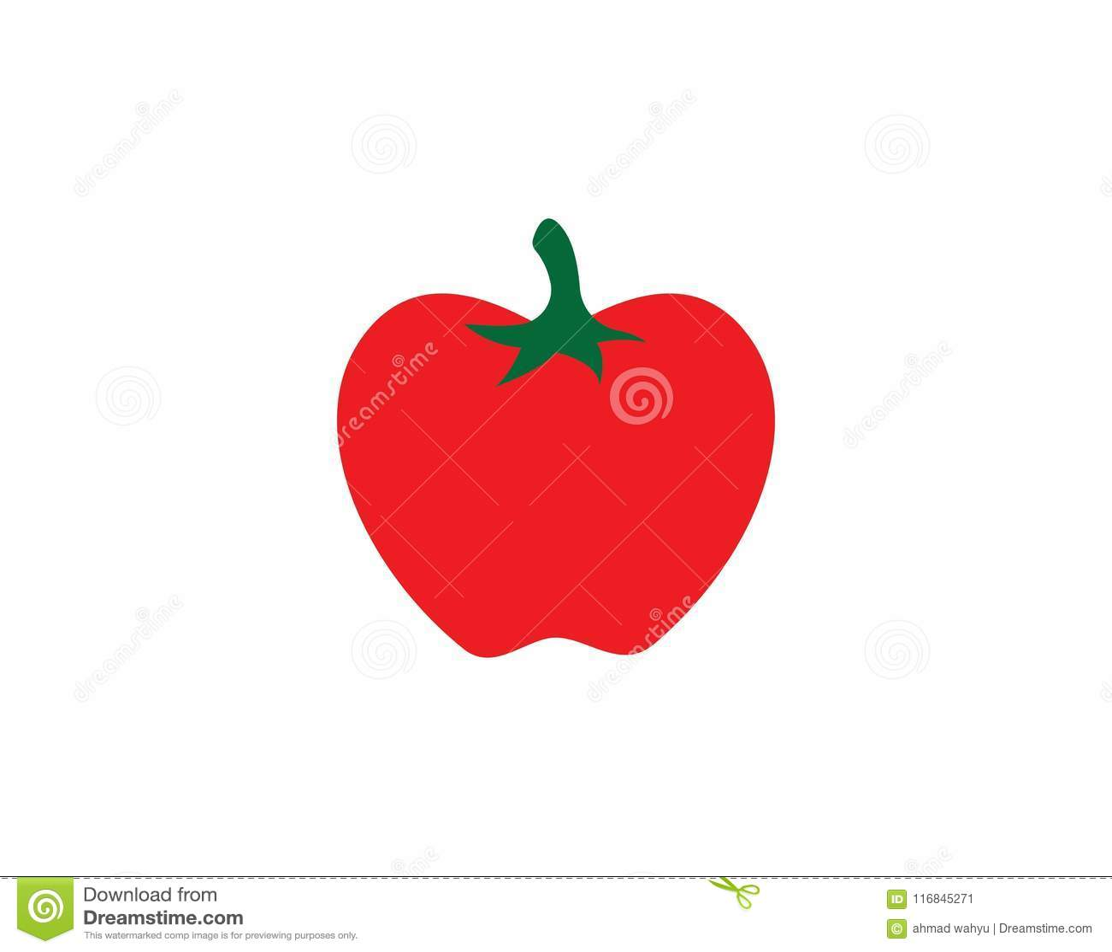 tomato vector ilustration stock vector illustration of tomatoes