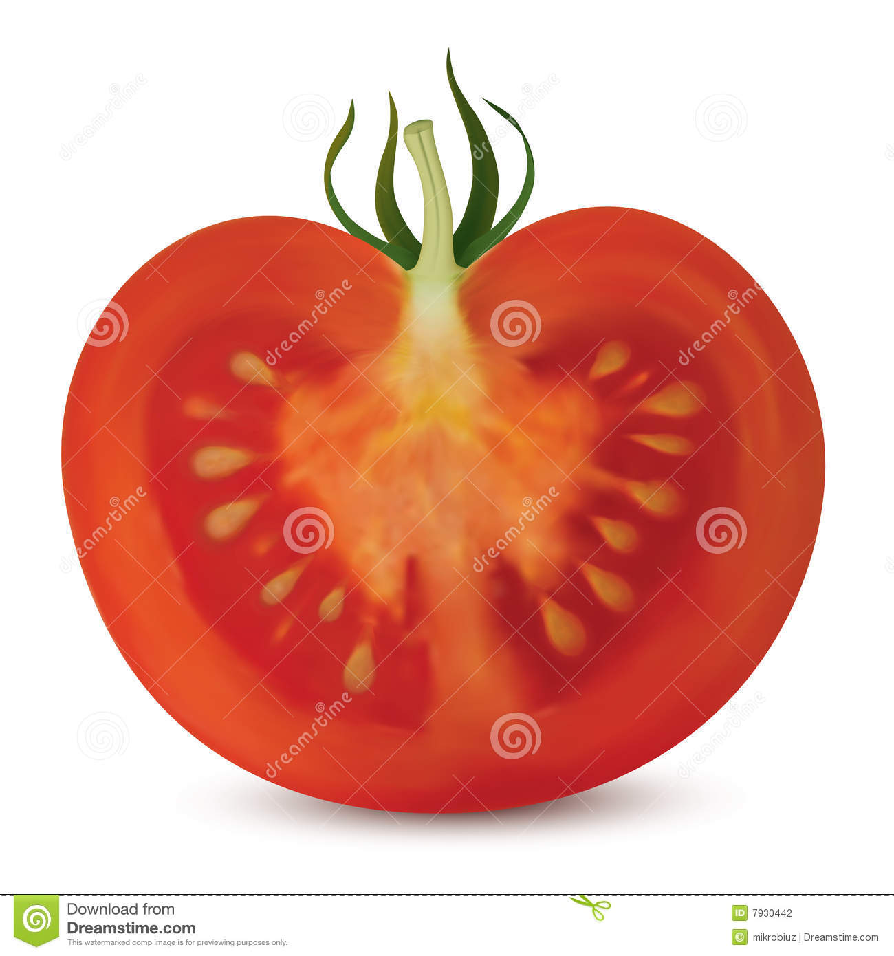 Tomato Vertical Cut Stock Photography Image 7930442