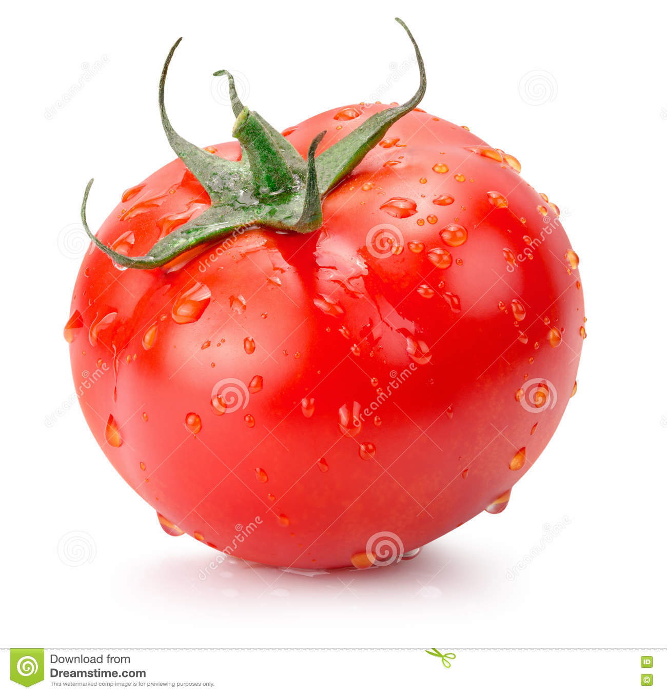 Download Tomato With Water Drops Isolated On The White Background Stock Image - Image of organic, tomato: 70407585