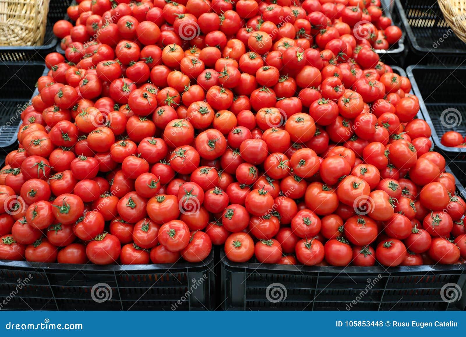 tomatoes bulk