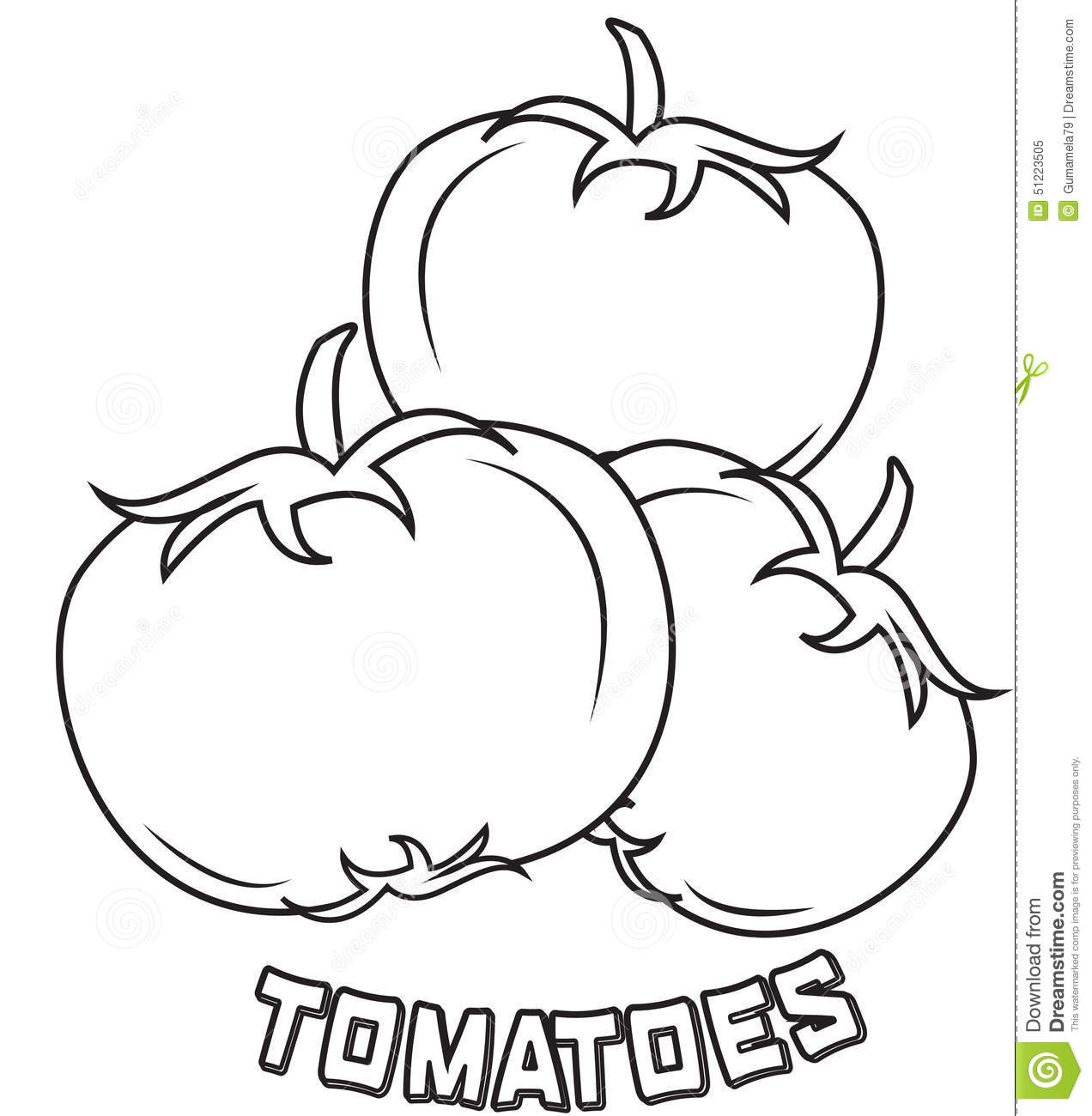 Tomatoes coloring page stock illustration. Illustration of closeup ...