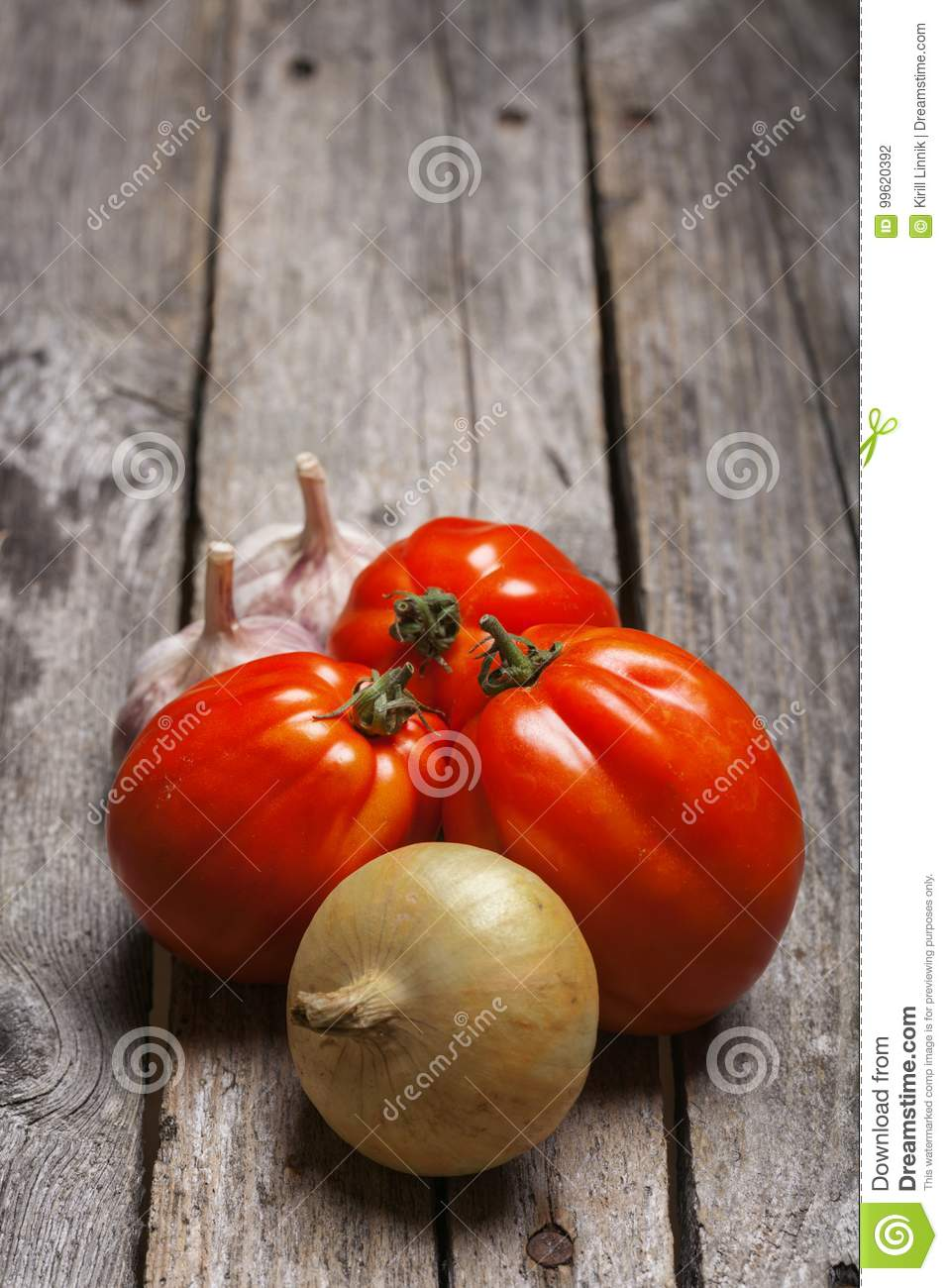 Download Tomatoes, Onion And Garlic On The Table Stock Photo - Image of agriculture, fresh: 99620392