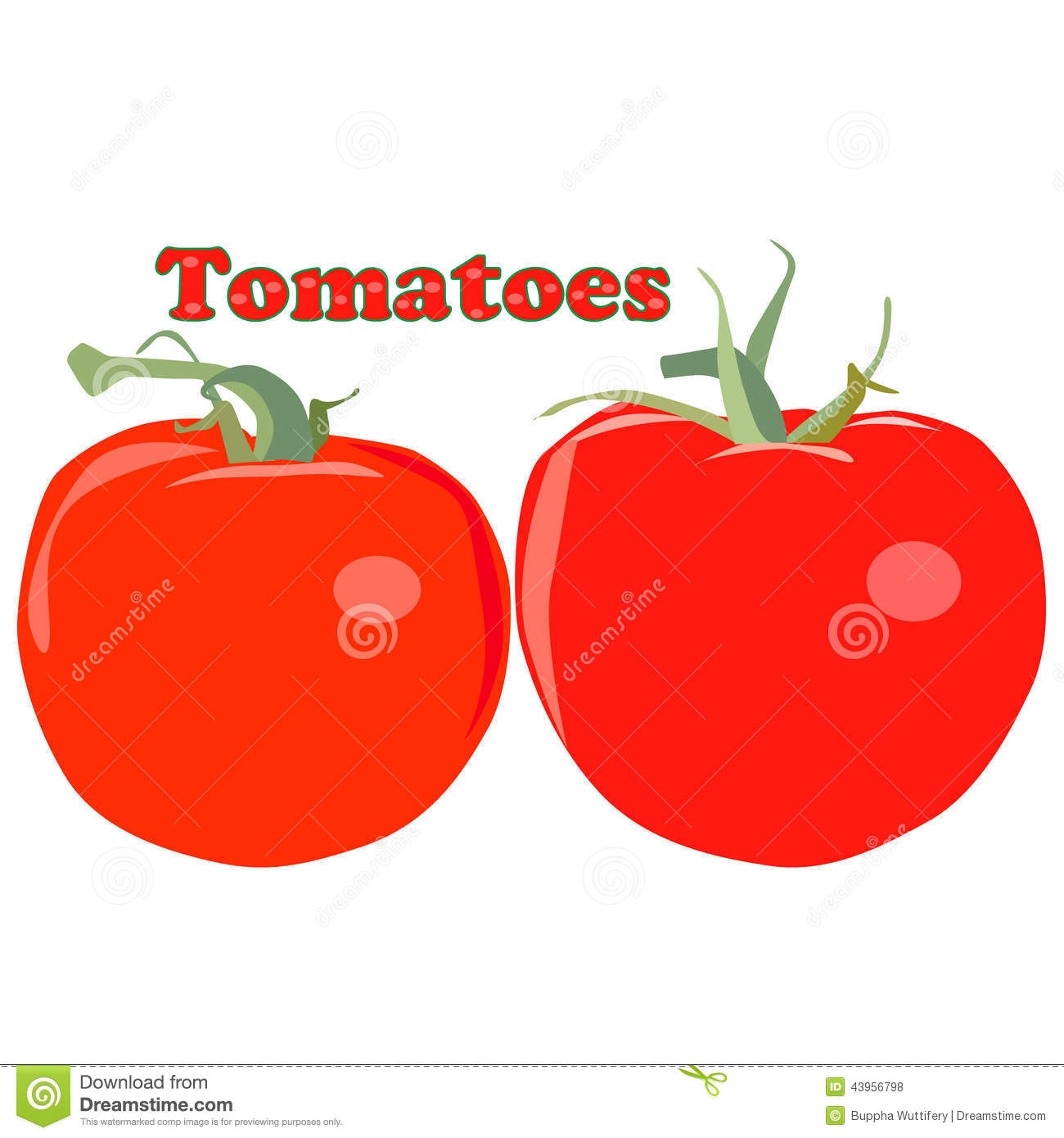 Tomatoes vector