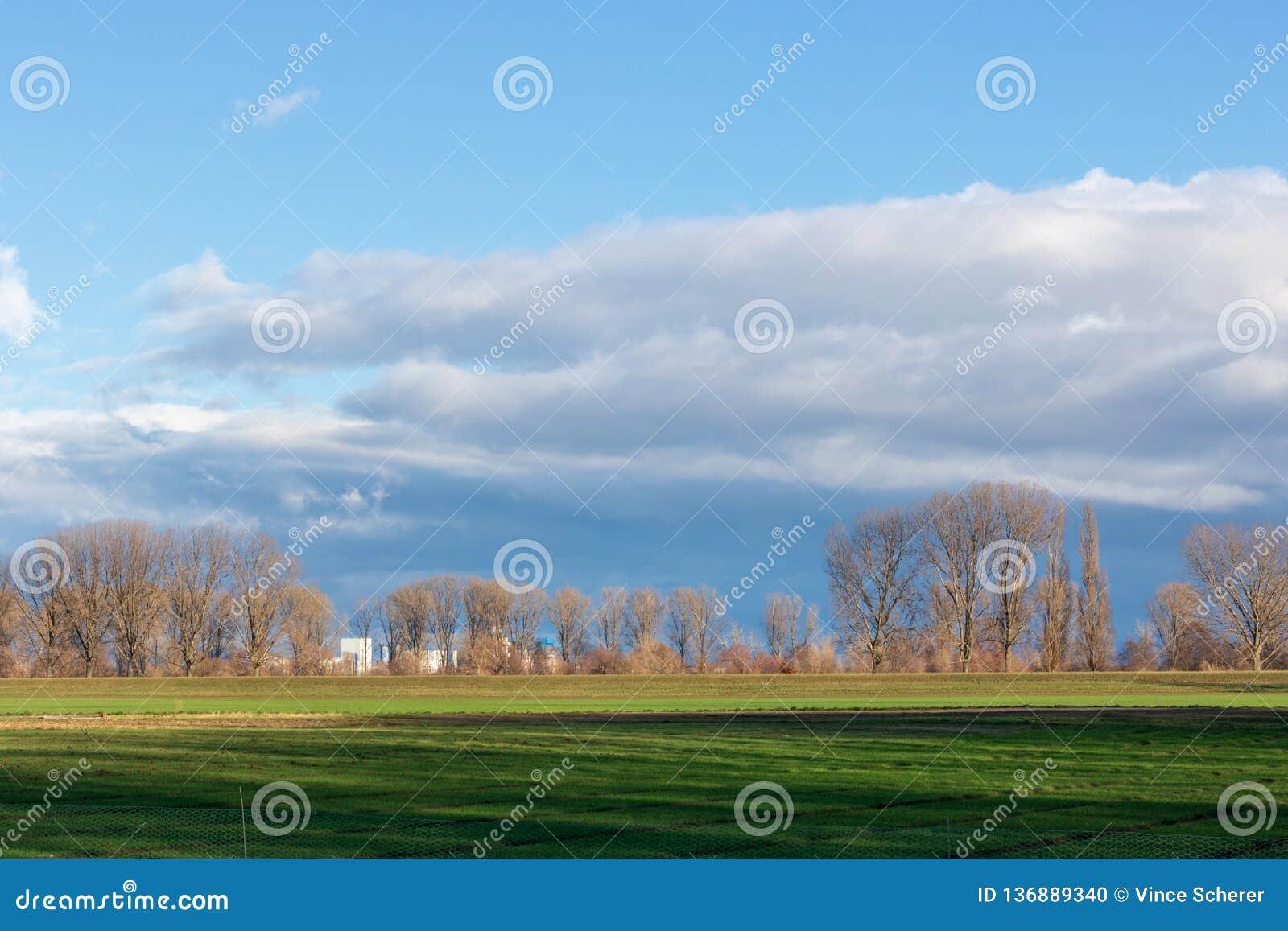 Tomma fält i vinter i bygd natur i Frankenthal - Tyskland