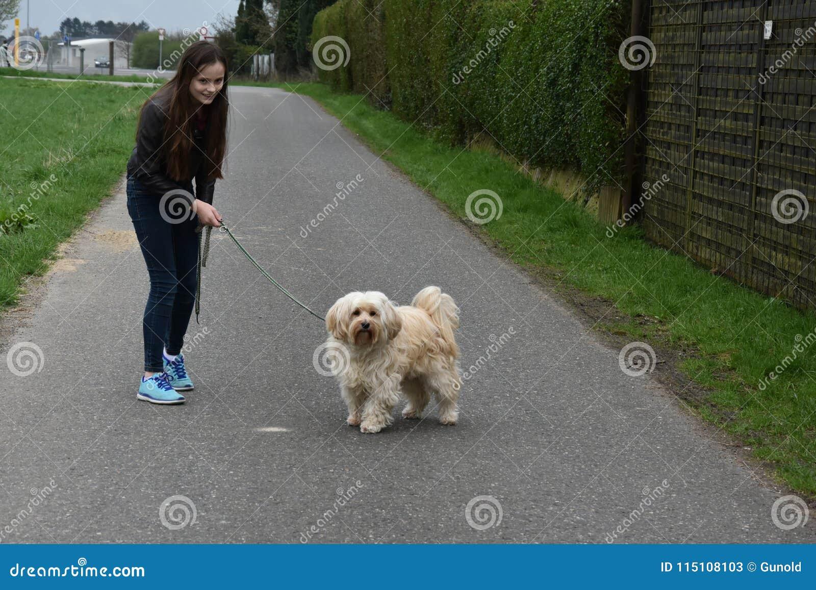 Tonårs- flicka som hundbarnvakt