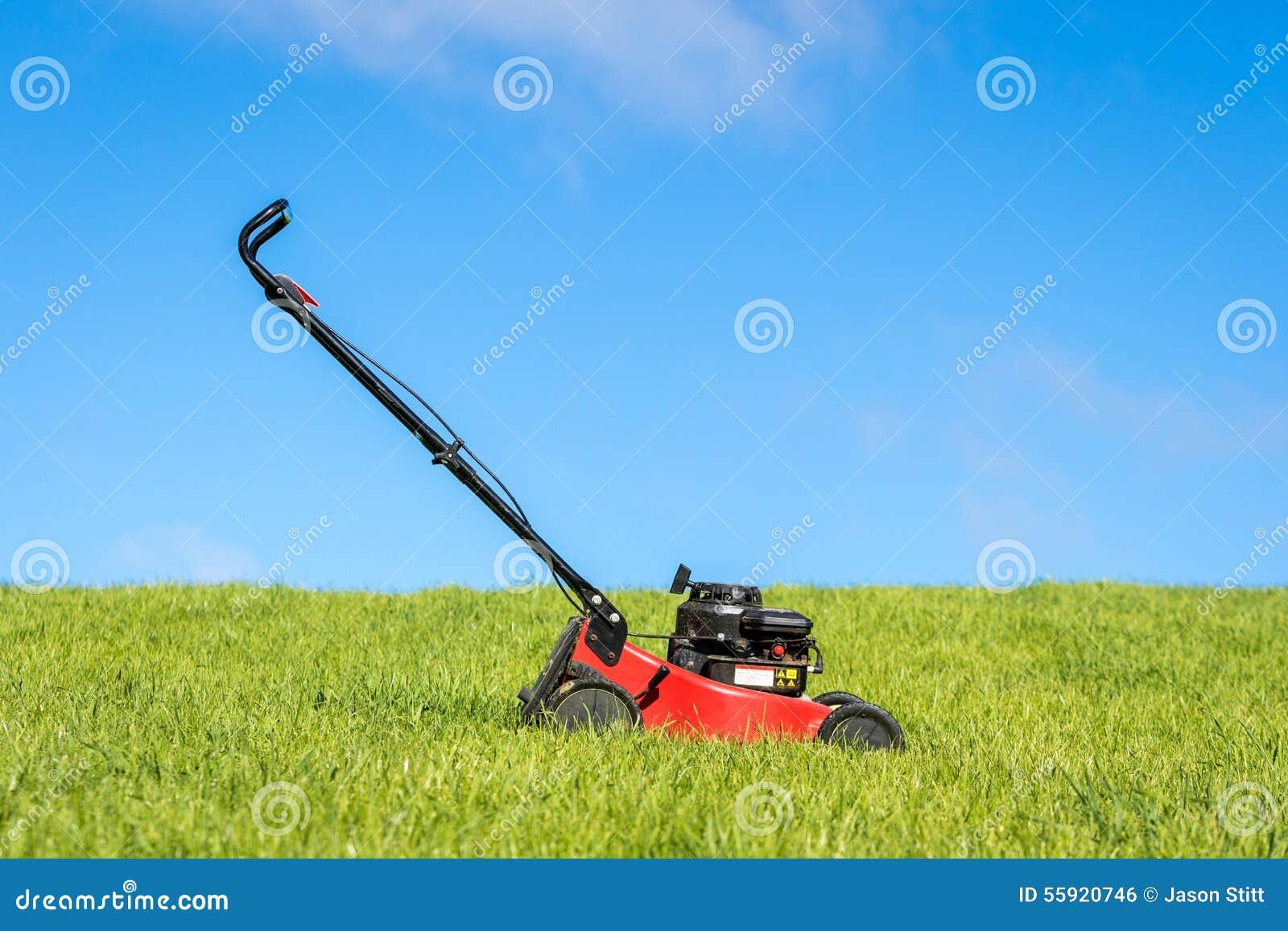 Tondeuse à gazon dans l herbe