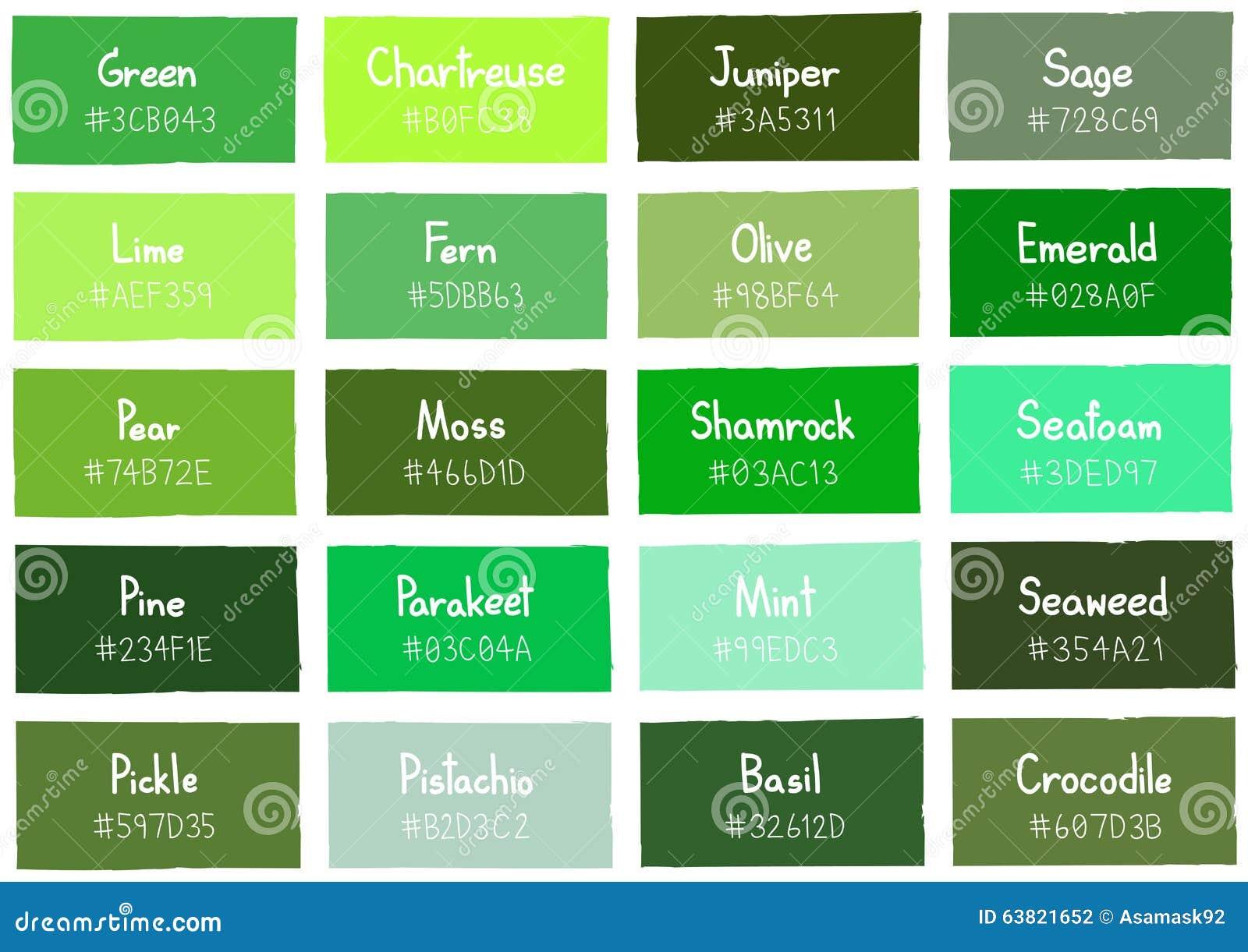 Tone color shade background verde con c digo y nombre ilustraci n del vector imagen 63821652 - Nombres de colores de pinturas ...