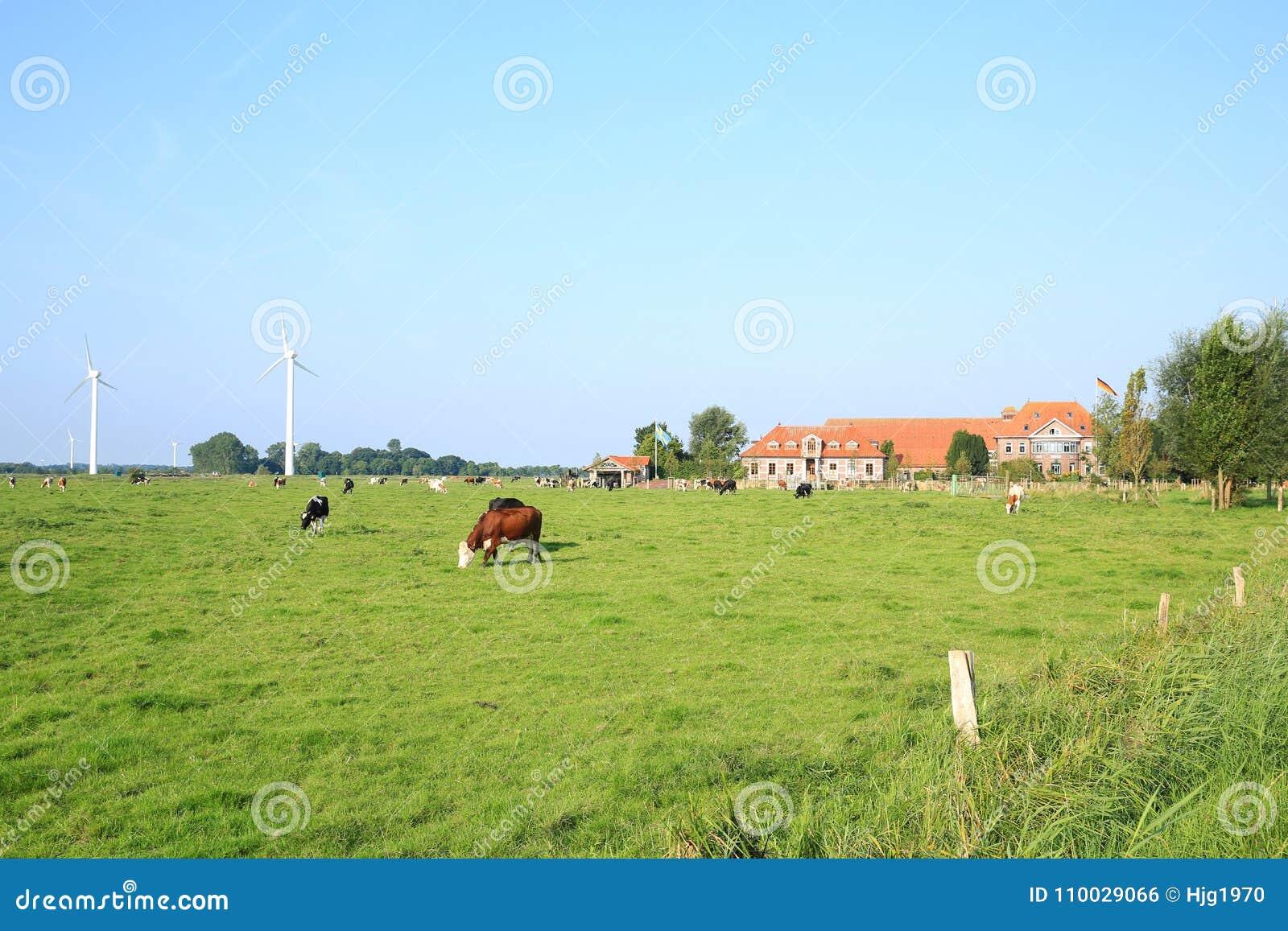 Toneellandschap in Wangerland, Friesland, Nedersaksen, Duitsland