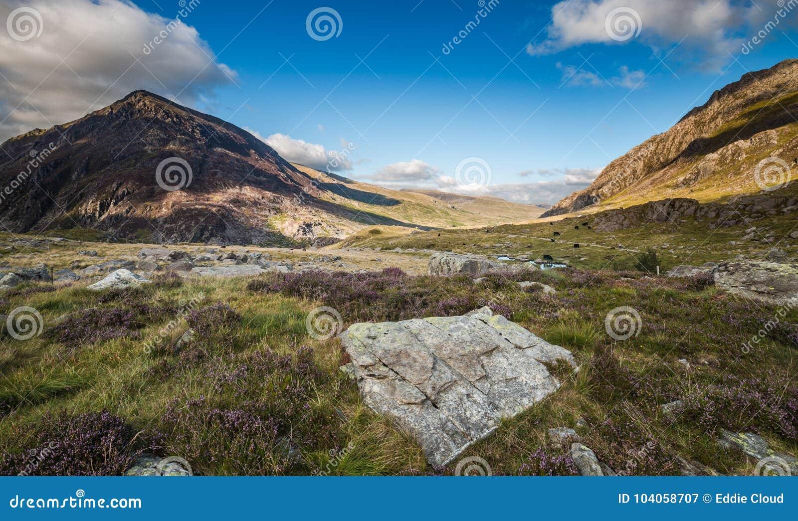 Toneelllyn ogwen valley bij de Zomer in het Nationale Park van Snowdonia, W