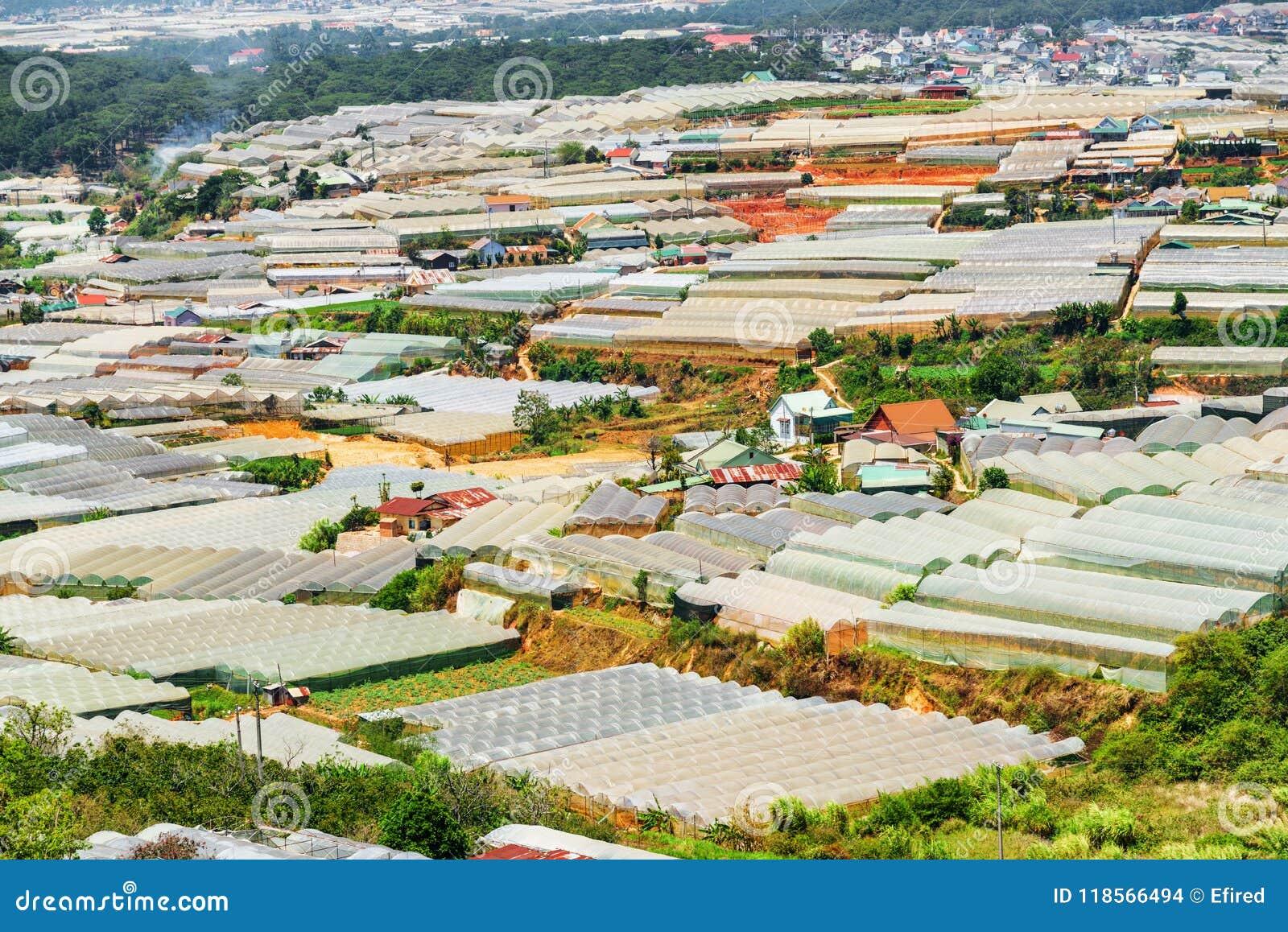 Toneelmening van serres bij organische landbouwbedrijven