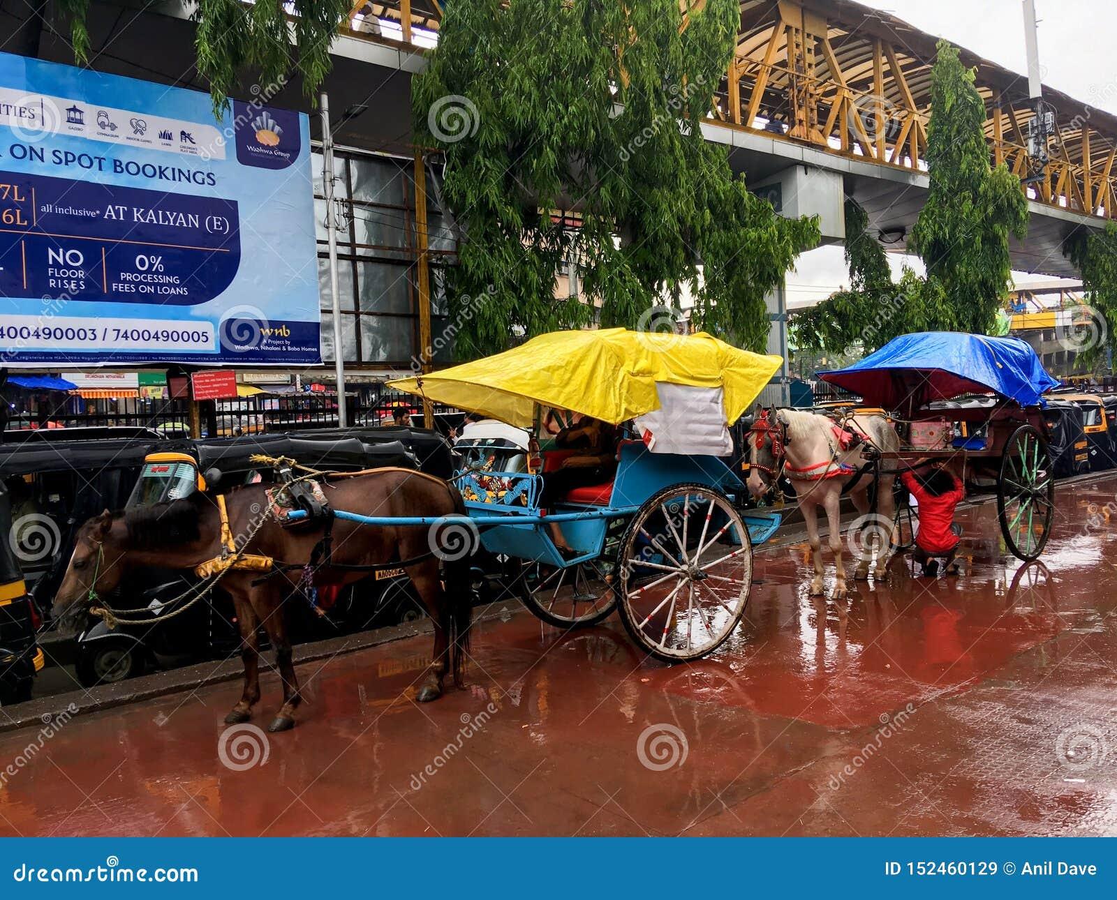 Tongahorse fura przy Kalyan stacją kolejową na monsunu maharashtra INDIA