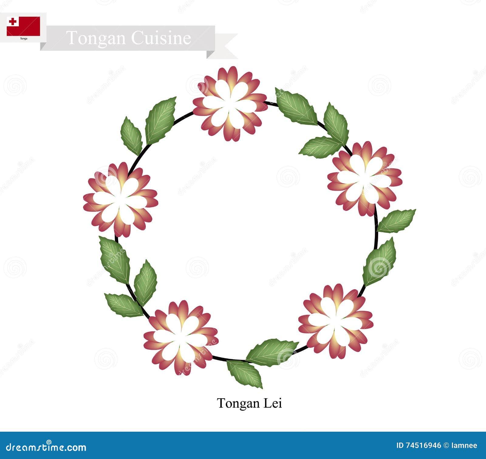 Tonga Lei Or Tongan Heilala Flowers Garland Stock Vector - Image ...