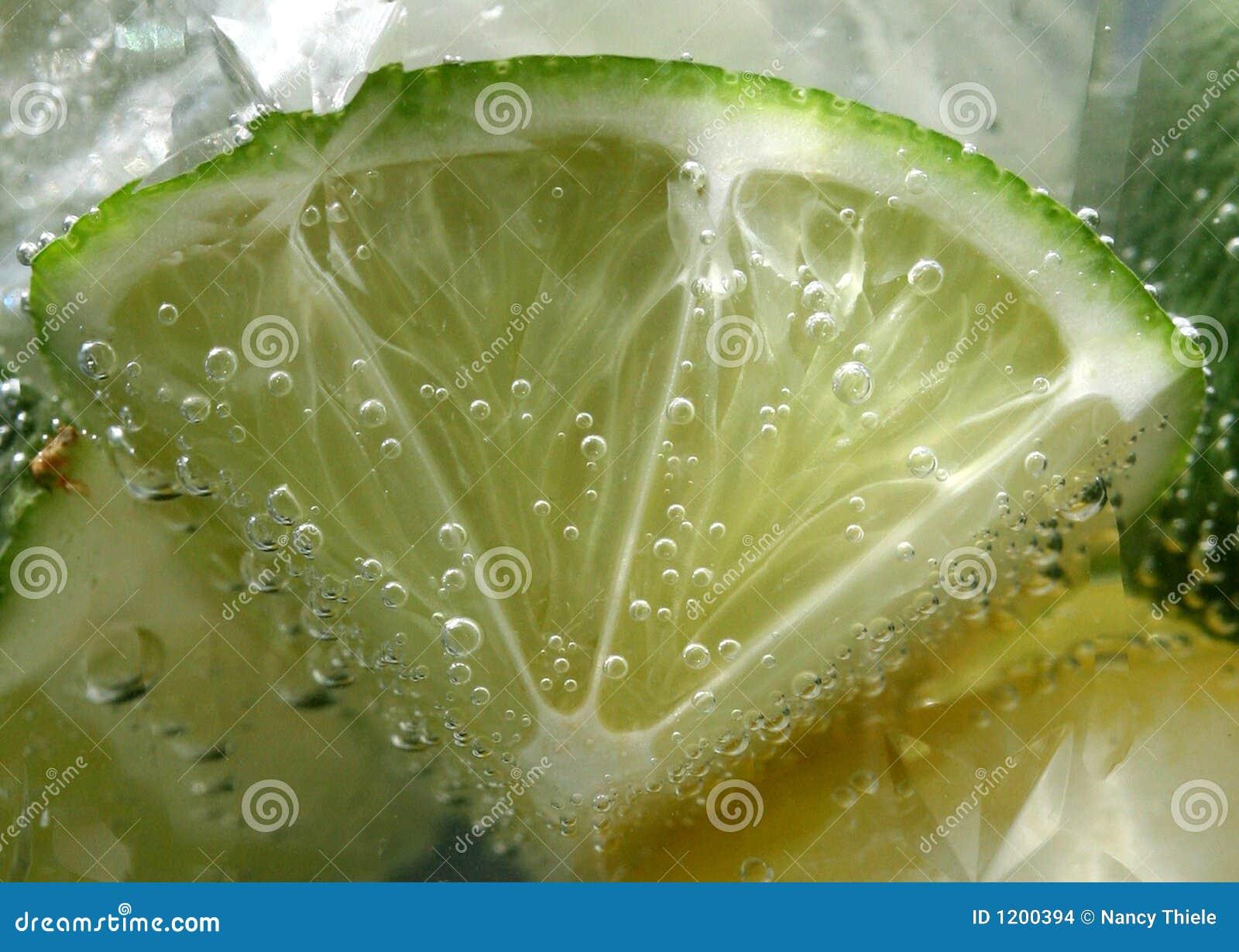 Tonic bubbles on lime