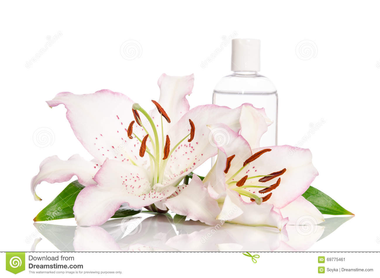 Tonic for skin care with lily flower stock image image of flower tonic for skin care with lily flower izmirmasajfo