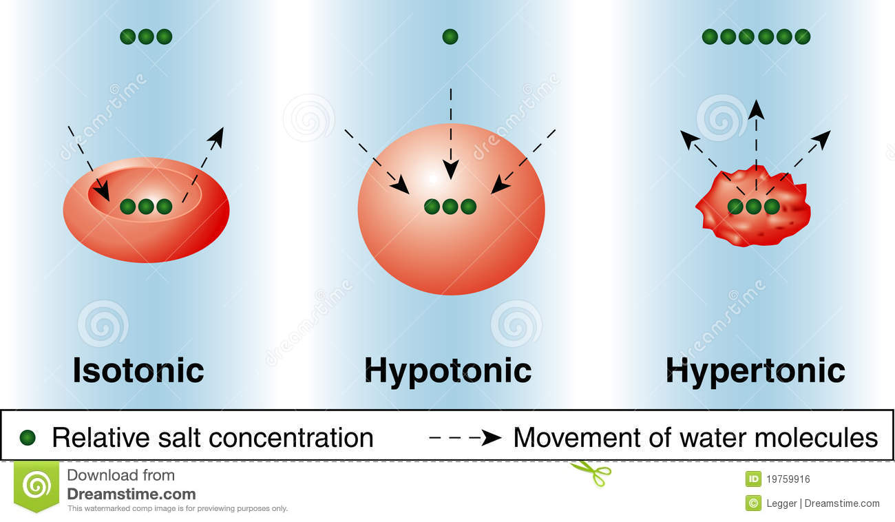 isotonic hypotonic and hypertonic