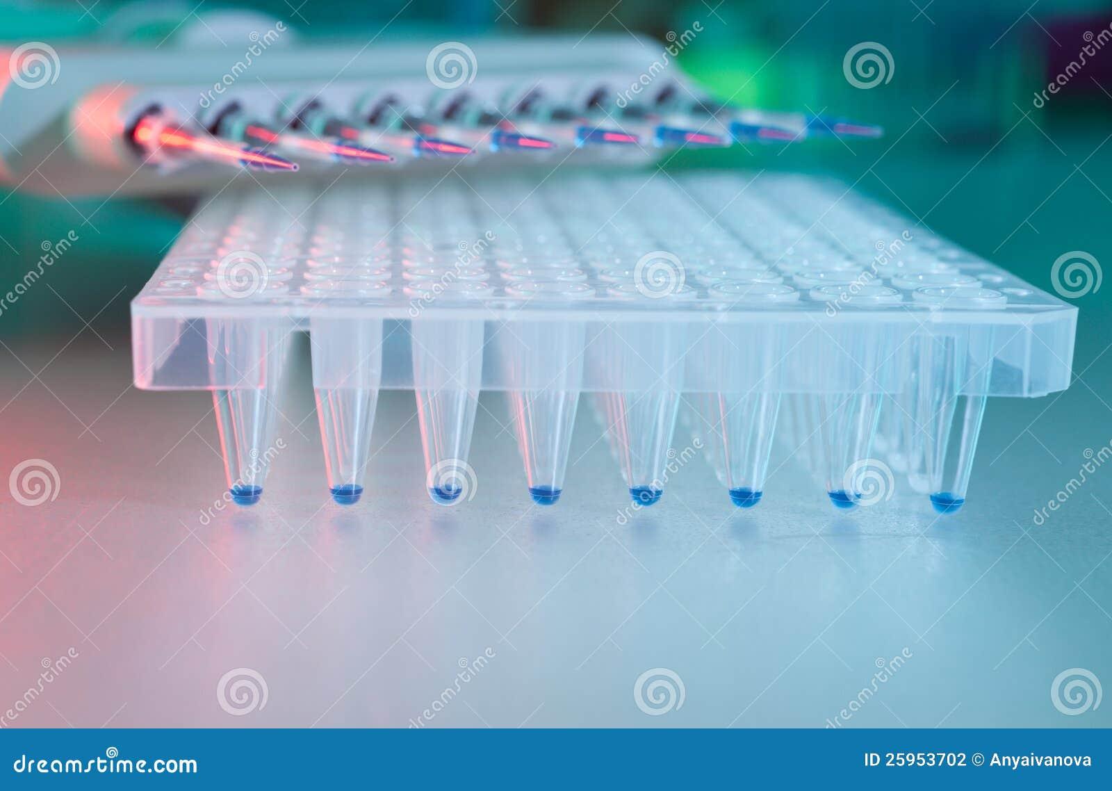 DNA Sequence Data Analysis — Starting off in Bioinformatics
