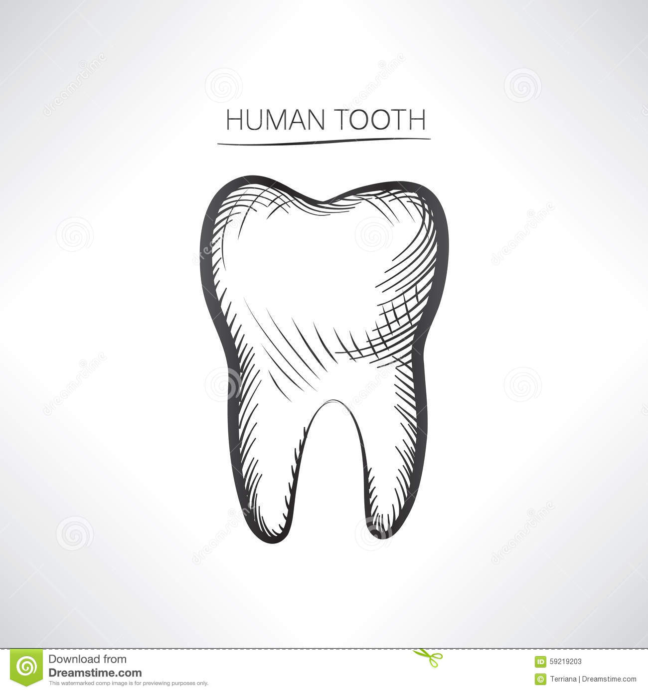 This is an image of Massif Drawing Of Teeth