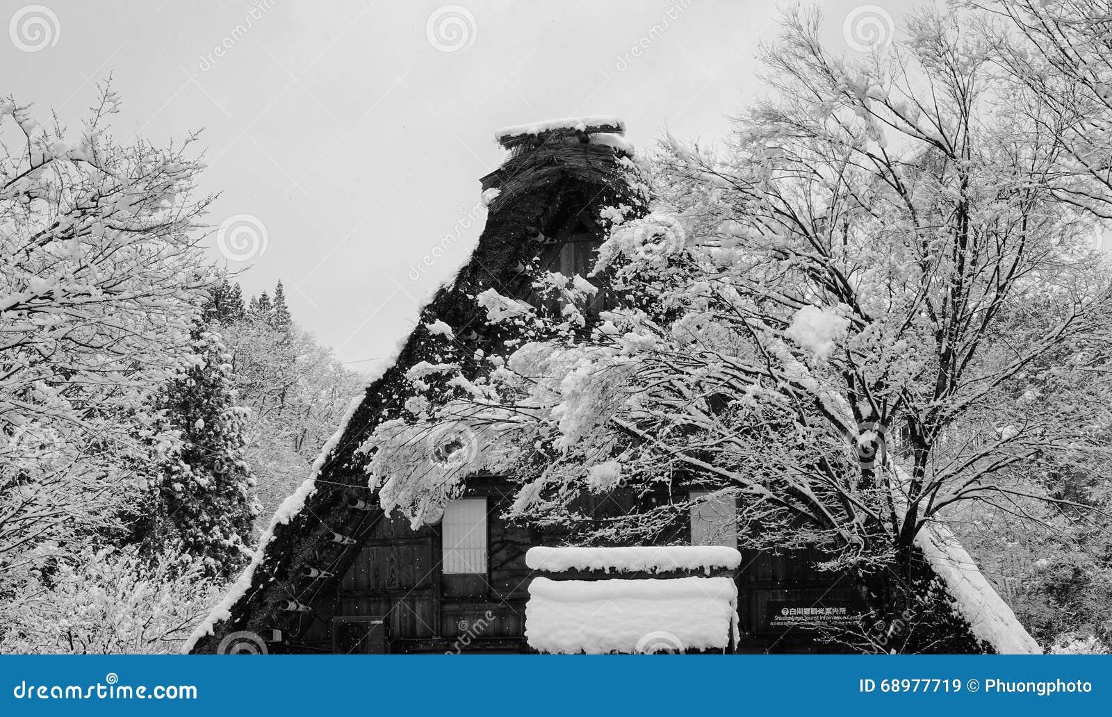 Top de la casa de madera con los árboles en bosque en el invierno