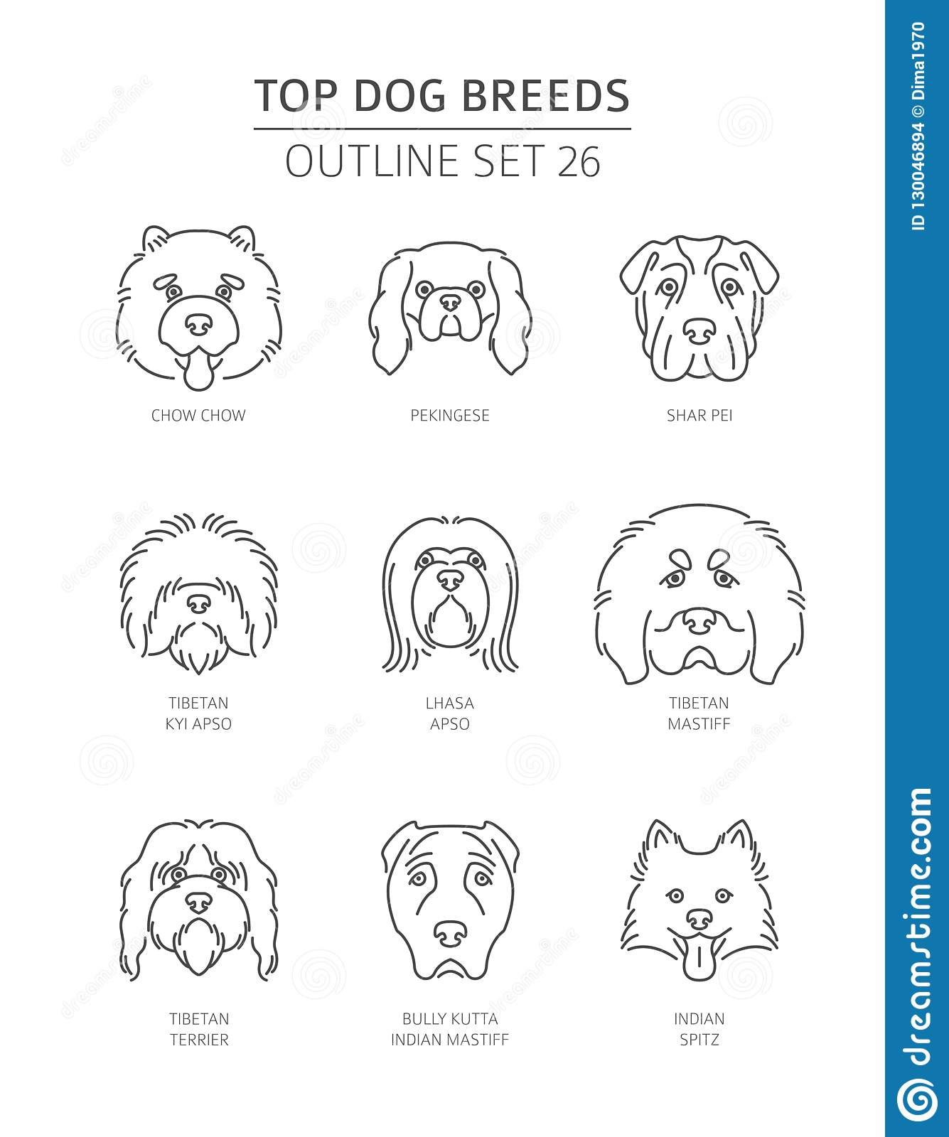 Top Dog Breeds  Pet Outline Collection Stock Vector - Illustration