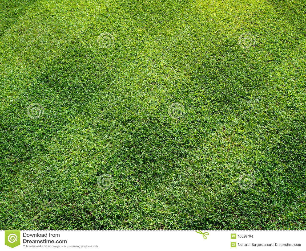 top view of beautiful square tone lawn stock images