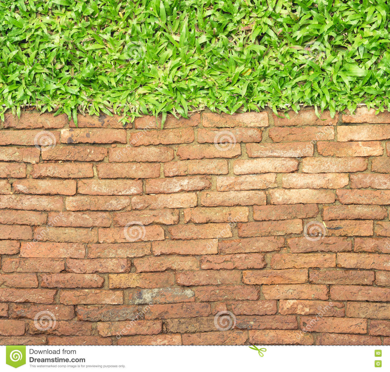Top View Brick Walk Path And Grass Land Background Stock Photo