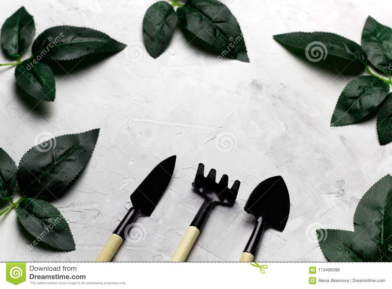 rose leaves and garden tools frame, spring gardening concept